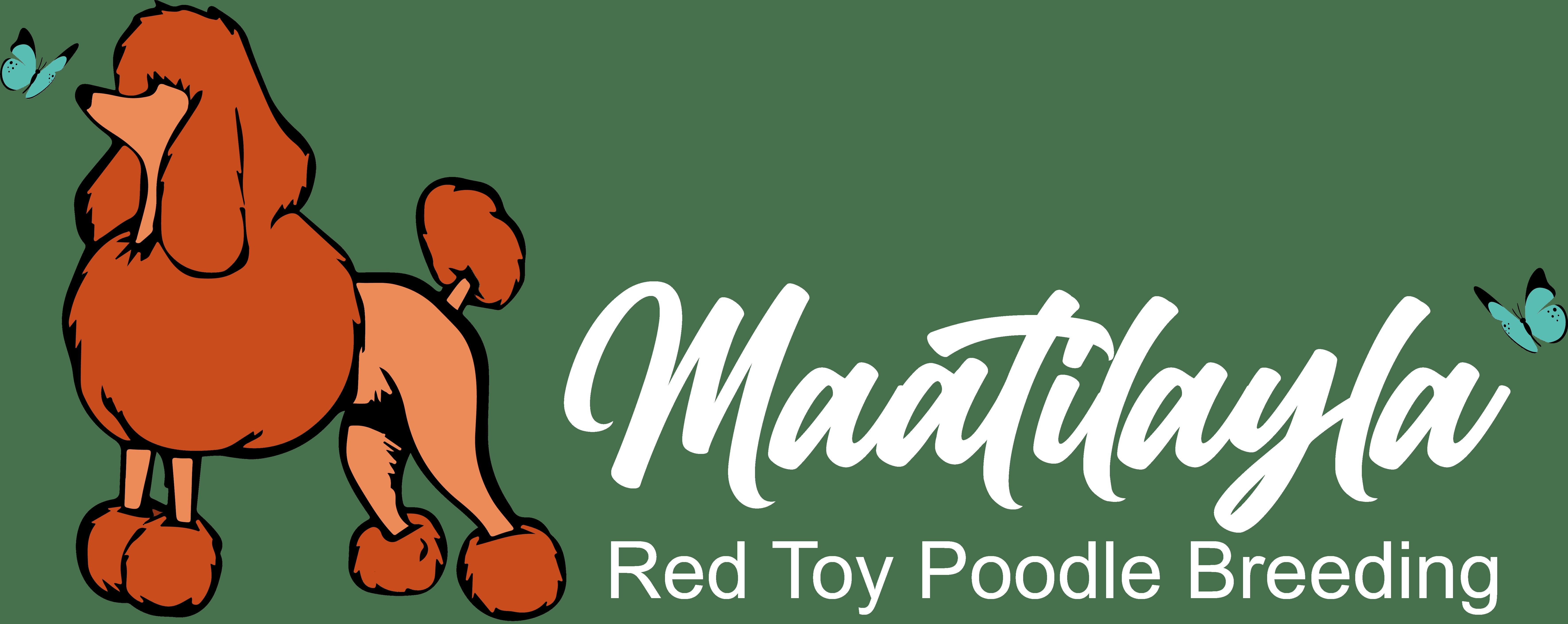 logo dell'allevamento Maatilayla